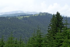 Candrel mountains Romania Paltinis Sibiu view Royalty Free Stock Photography