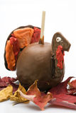 Candy Apple - Turkey Royalty Free Stock Photos