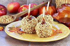 Candy Apples and Ingredients Stock Photo