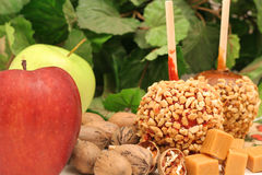 Candy Apples With Nuts & Caramel Stock Photography