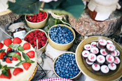 Candy bar. Banquet table full of berries and an assortment of sweets. pie and cake. wedding on the nature. Candy bar. Banquet table full of berries and an Royalty Free Stock Photo