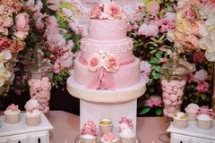 Candy bar and wedding cake. Table with sweets, buffet with cupcakes, candies, dessert. royalty free stock photos