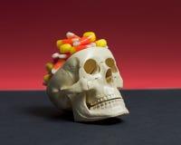 Candy Brain Skull Fotografia Stock Libera da Diritti