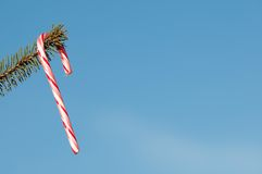 Candy cane. Royalty Free Stock Image
