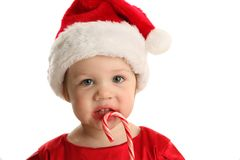 Candy Cane Cutie Royalty Free Stock Image