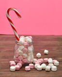 Candy cane in jar with marshmallows Stock Images
