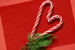 Candy cane on a red background in the form of a heart with a sprig of fir. Christmas sweets. Valenti. Candy cane on a red background in the form of a heart with stock photography
