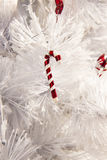 candy cane tree Royalty Free Stock Image