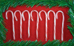 Candy canes. Royalty Free Stock Image