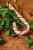 Candy canes with mint leaves  on a wooden background Stock Photos