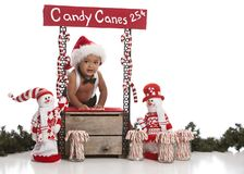 Candy Canes for Sale Royalty Free Stock Photography
