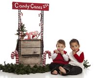Candy Canes for Sale Stock Photo