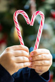 Candy Canes in the Shape of the Heart Stock Photos