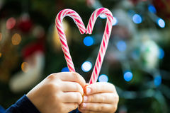 Candy Canes in the Shape of the Heart Stock Images