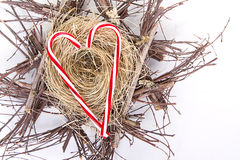 Candy canes in the shape of a heart on a nest Stock Images