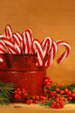 Candy canes in tin. Candy canes and berries in a red old tin can royalty free stock photos
