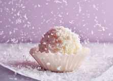 Candy. Coconut candy; coconut flakes raining Stock Photos