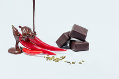 Candy con i frutti fotografia stock libera da diritti