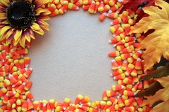 Candy corn frame sun flower leaves background Royalty Free Stock Image