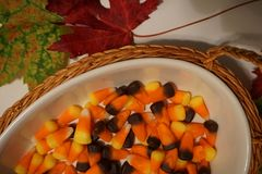 Candy corn and leaf fall display Royalty Free Stock Image