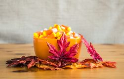 Candy corn in an orange bowl with autumn leaves on a wooden table Royalty Free Stock Photo