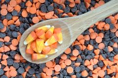 Candy corn in spoon Stock Photos