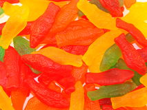 Candy Fish. A whole school of candy fish royalty free stock photography