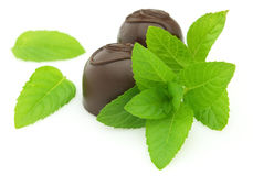 Candy with fresh mint Royalty Free Stock Photos