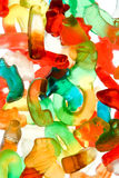 candy gumowatego ponosi Zdjęcia Stock