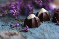 Candy and lavender on shabby chic Stock Images