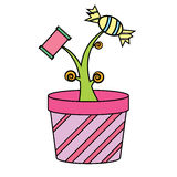 Candy Plant Royalty Free Stock Image