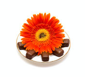 Candy on plate and flower Stock Photos