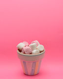 Candy in small container Royalty Free Stock Photos
