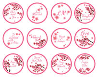 Candy Sticker Labels with sakura Royalty Free Stock Images