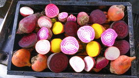 Candy stripe, golden and purple beetroot halves royalty free stock images