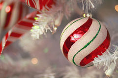 Candy Stripe Ornament. A Candy Cane Striped holiday ornament hanging from a white tree Stock Photos
