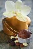 Homemade candy, chocolate and flower. Stock Photos