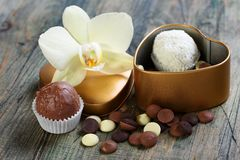 White Orchid and handmade chocolates. Stock Image