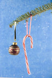 Candycane ornament on fir branch Stock Photos