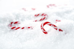 Candycanes royalty free stock photography