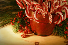 Candycanes. Candy canes in a red antique tin can royalty free stock images