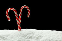 Candycanes in snow Royalty Free Stock Image