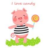 CandyPig Fotografia Stock