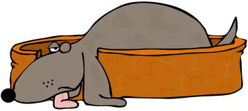 Cane addormentato mezzo Fotografie Stock Libere da Diritti