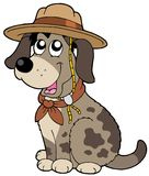 Cane amichevole in cappello dell'esploratore Fotografia Stock