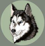 Cane amichevole sveglio, animale canino, mondo animale, emblema della testa di cane dell'illustrazione, paiting illustrazione vettoriale