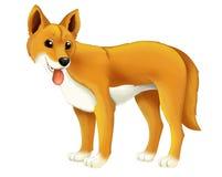 Cane animale del dingo del fumetto Fotografia Stock