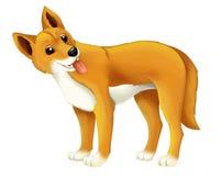 Cane animale del dingo del fumetto Immagini Stock