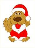 Cane, anno del cane, Fotografia Stock
