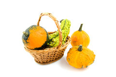 Cane basked with gourds Stock Image